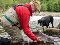Carden Guided Salmon Fishing In Moray Caught Salmon
