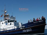 Carden - Moray Firth Dolphins Gemini Explorer Featured